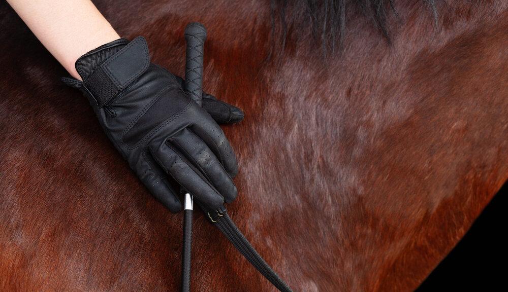 Paardrijshandschoenen
